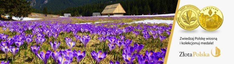 Jak spędzać czas wolny wiosną?
